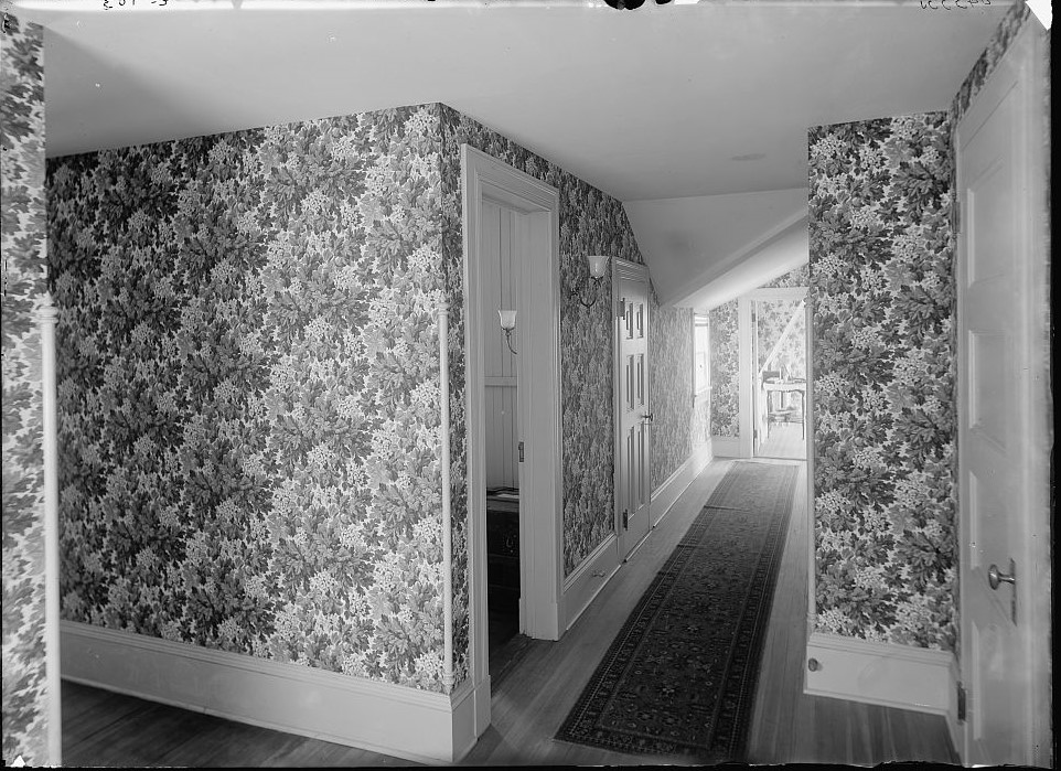 Hall with floral wallpaper, probably in a clubhouse, New York City ca. 1900 (Library of Congress) (2)