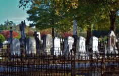 Patron – These transcriptions from Evergreen Cemetery include many pioneers of Tuscaloosa