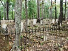 These transcriptions of tombstones in two old cemeteries located in Tuscaloosa reveal some early pioneers relations
