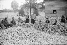 Quilting and Corn-shucking in Alabama in 1936 was often time for a party