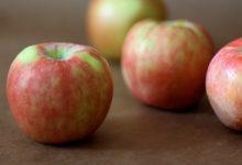 RECIPE WEDNESDAY: Old-fashioned Apple Slump
