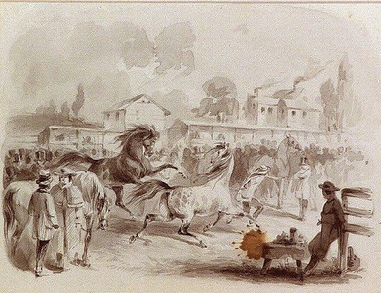 Horse Racing took place in the main street of Greensboro, Alabama in the early days