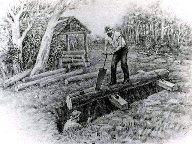 PATRON + Lumber for the White House in St. Stephens was acquired with a whipsaw