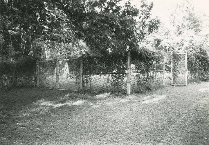 Anecdotes about the pioneer Prewitts and Myatts buried in Colbert County, Alabama