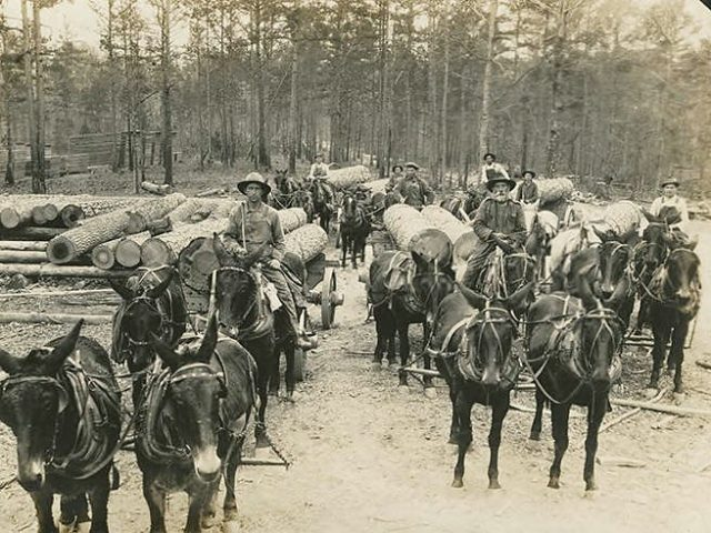 PATRON + Tuscumbia, Alabama – Prominent Businessmen in 1890 – PART IV