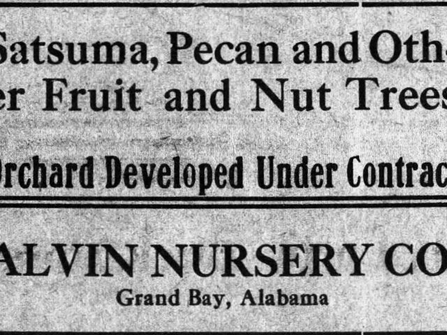 A gift from Japan created a whole new industry in Alabama in 1878.